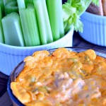 Buffalo Dip Three Ways @spabettie