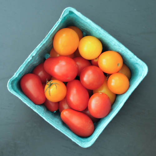 cheesy tomato pie