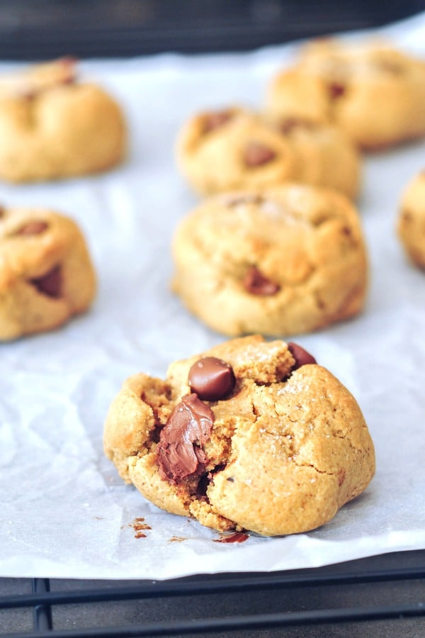 fresh baked grain free chocolate chip cookies on a parchment covered cookie sheet
