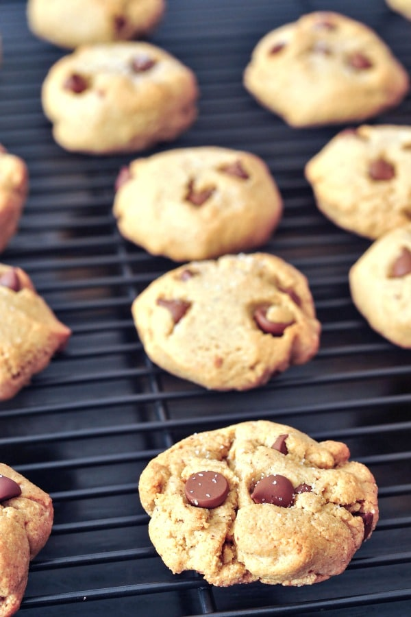 Grain Free Chocolate Chip Cookies lined up on a baking rack
